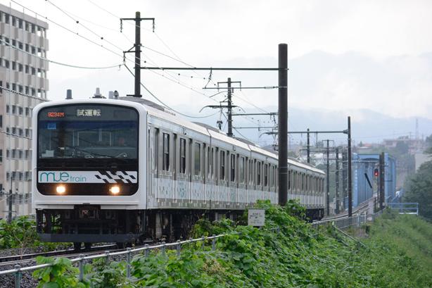 DSC_8597cm